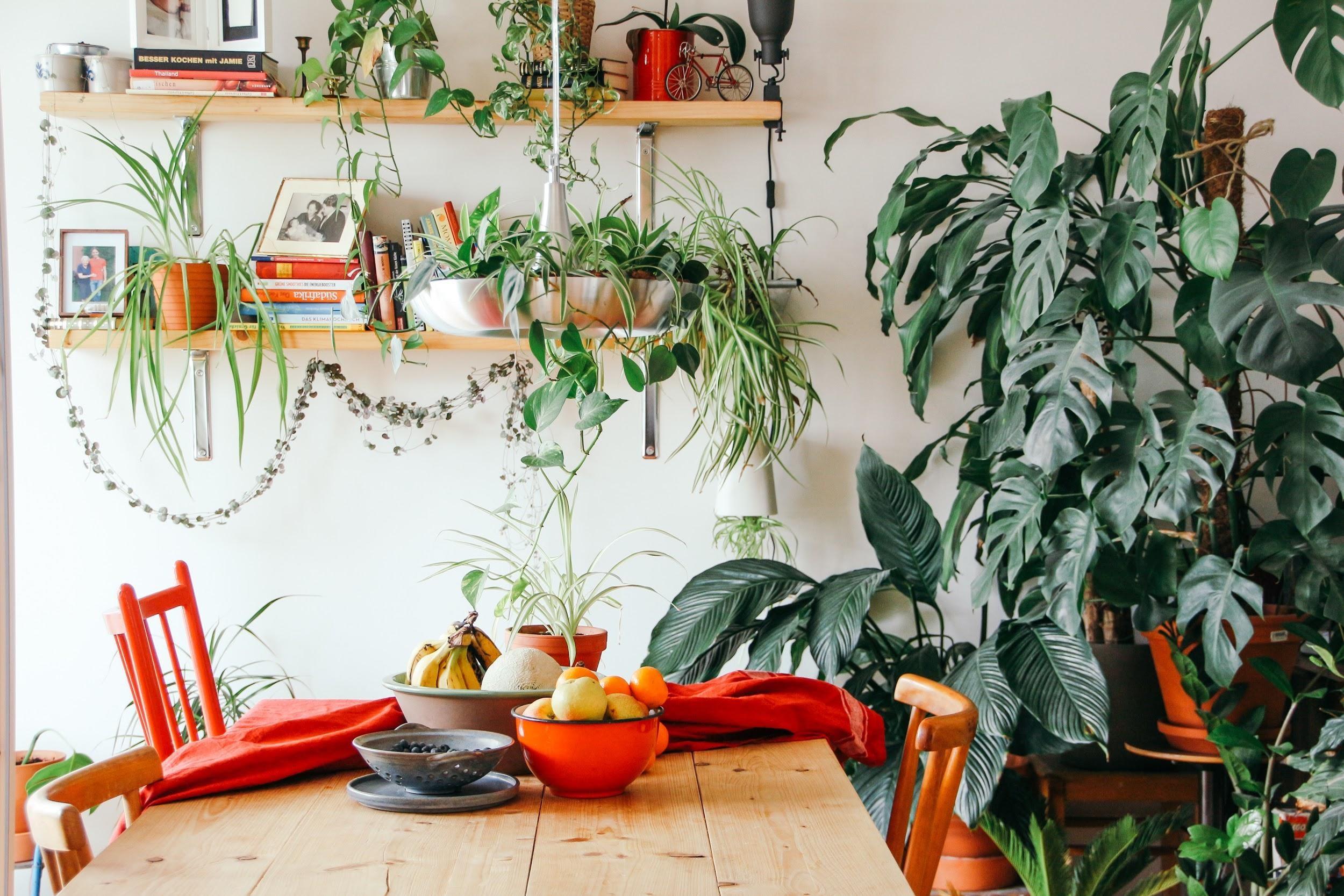 Guest Post: Transform Your Interior
