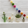 Polka Dot Cactus Mini Planter Alternative Image 1
