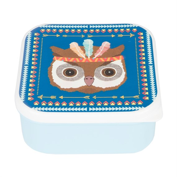Square Owl Animal Adventure Square Lunch Box