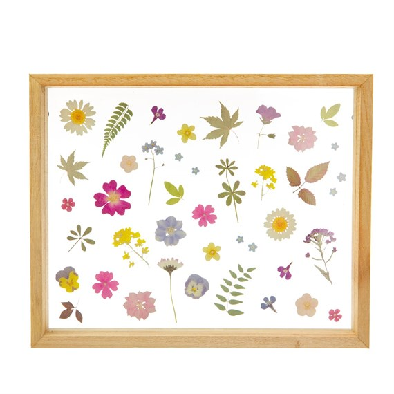 Pressed Flowers Framed Wall Art