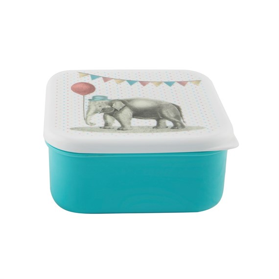 Elephant Square Lunch Box