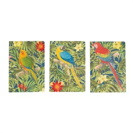 Parrot Paradise Notebook  (options available)