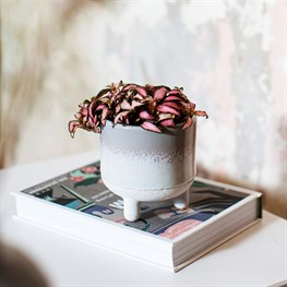 Mojave Glaze Grey Planter