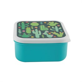 Square Colorful Cactus Lunch Box
