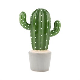 Cactus Money Bank