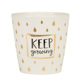 Gold Keep Growing Planter