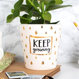 Metallic Monochrome Keep Growing Planter