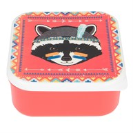 Raccoon Animal Adventure Square Lunch Box