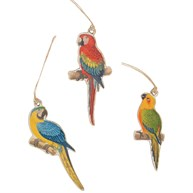 Set of 12 Parrot Paradise Gift Tags