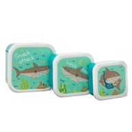 Shelby The Shark Lunch Boxes - Set Of 3