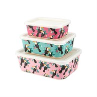 Tiki Toucan Bamboo Lunch Boxes - Set of 3