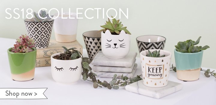 Cute homeware giftware fashion accessories uk sass for Cute homeware accessories